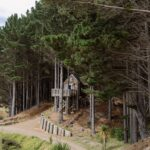 The Tree House in den Wäldern, Raglan, Waikato