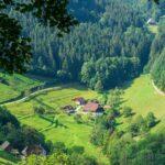 Holz mit Tradition: Altes Handwerk und innovative Ideen im tiefsten Schwarzwald